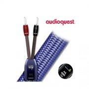 day-loa-AudioQuest-Wild-wood